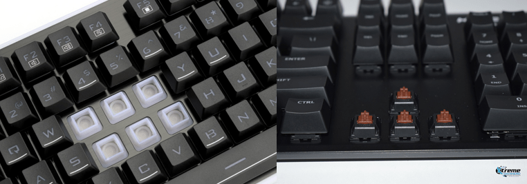 Membrane vs Mechanical Switches 1