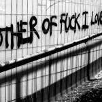 #JOYDIVISION #Decades #DavidLynch #Warsaw #HouseOfDolls #DavidBowie #IanCurtis