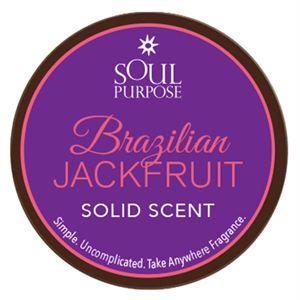 0003506 Brazilian Jackfruit Solid Scent 05 Oz 300