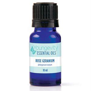 0003598 Rose Geranium Essential Oil 10ml 300 1 1