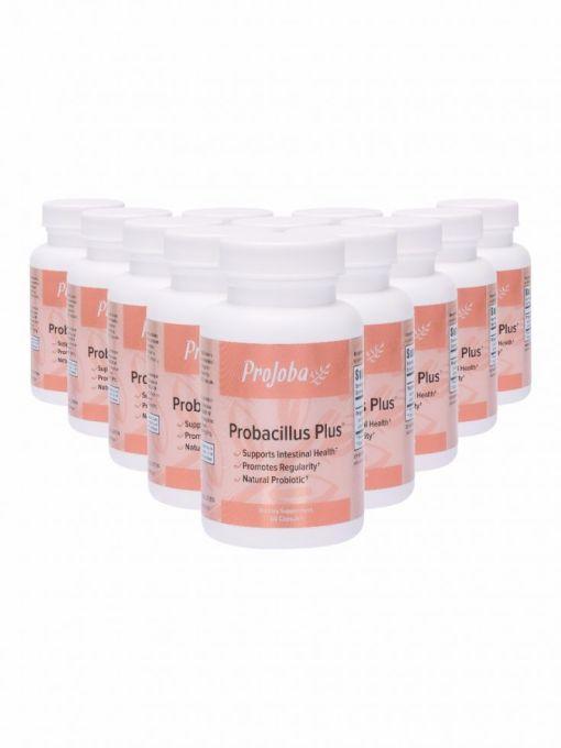 Pj435 Probacillus Plus 0416 12 Pack