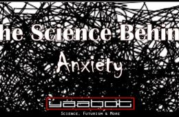 The Science Behind Anxiety: All You Need to Know