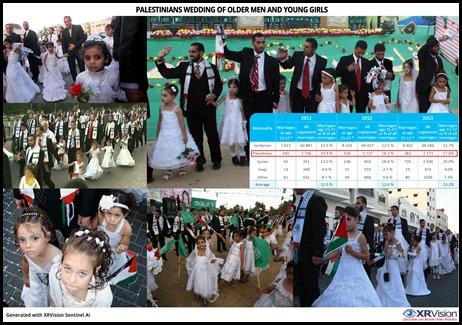 At a Palestinian Wedding