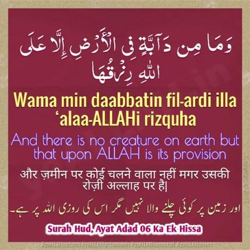 surah hud ayat-6-doodh-badhane ki dua