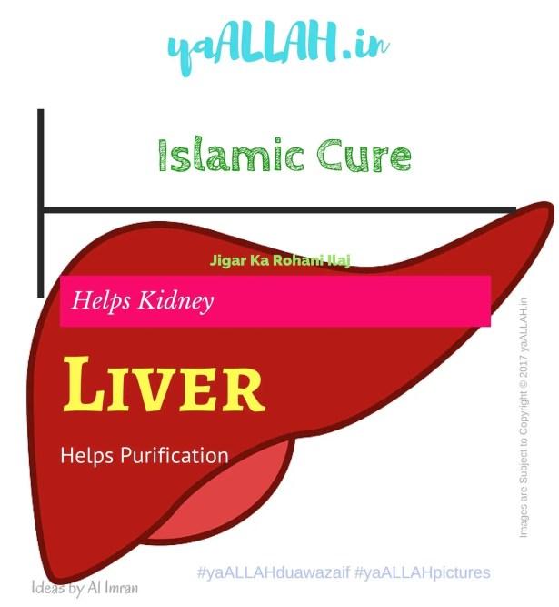 Islamic Cure for Liver-Jigar ke Har Marz ka Ilaj