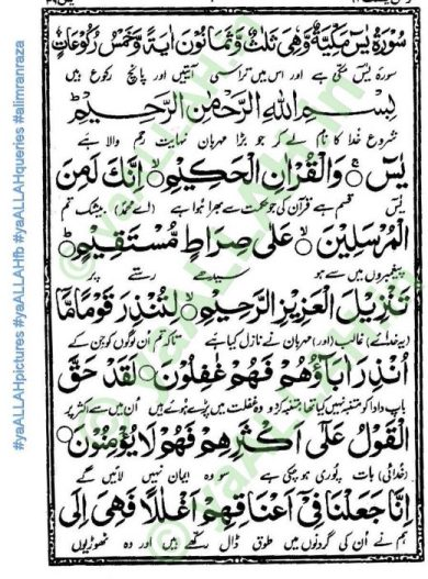 Surah Yaseen Shareef Full English_1_yaALLAH.in