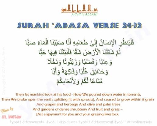 Surah-abasa-ayat-24-32-farming-in-islam-falyanzuril-insana-kheto-ki-dua yaALLAH