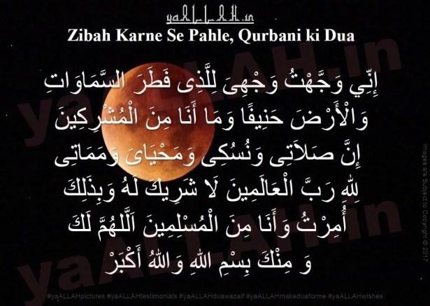 Qurbani Rules and Issues on Eid ul Adha-Zibah Karne Se Pahle-qurbani ki dua