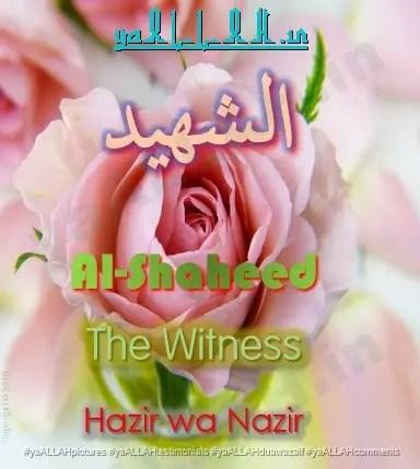 al-shaheed-hazir wa nazir