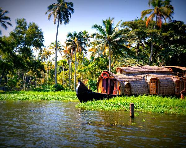 Kérala bateau en bambou sur un canal d'eau au milieu de la végétation