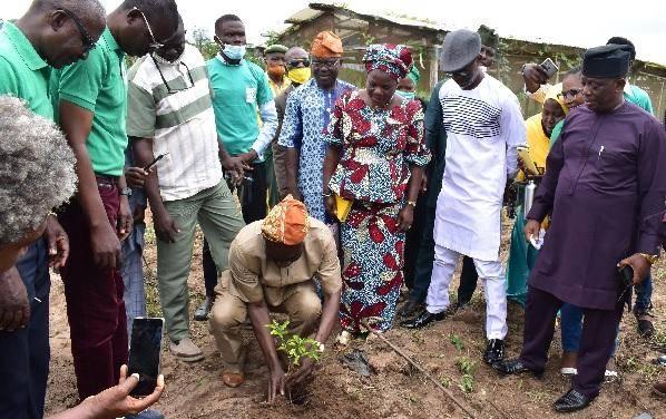 FUNAAB Alumnus Donates Seedlings to the Institution