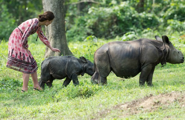 Kate feeding animals4