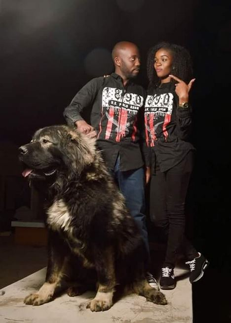 pre-wedding-shoot-with-dogs4