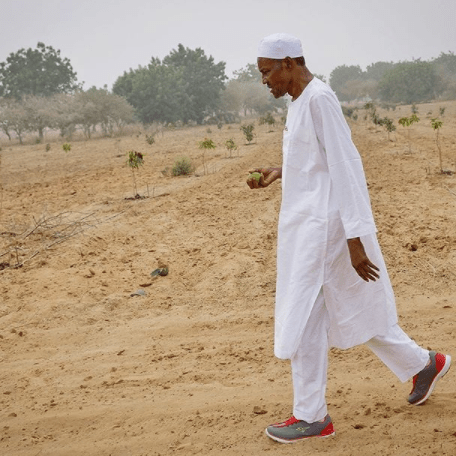 buhari sneaks - President Buhari sets a new fashion trend by rocking a pair of sneakers on traditional outfit