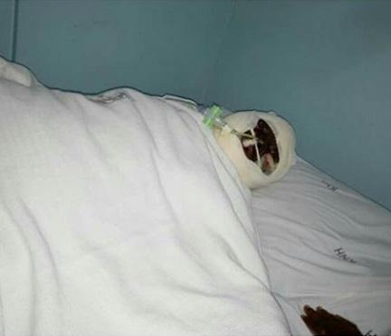 kenyan woman dies