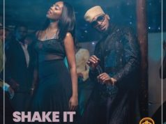 D'banj Shake it Lyrics