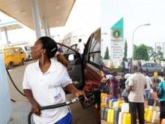 IPMAN reduce Petrol