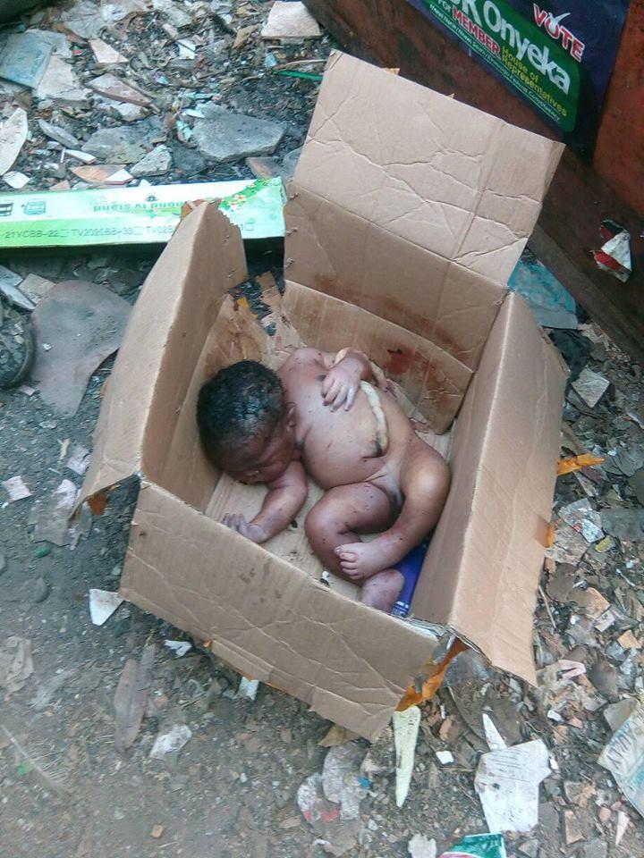 Newborn baby found dead