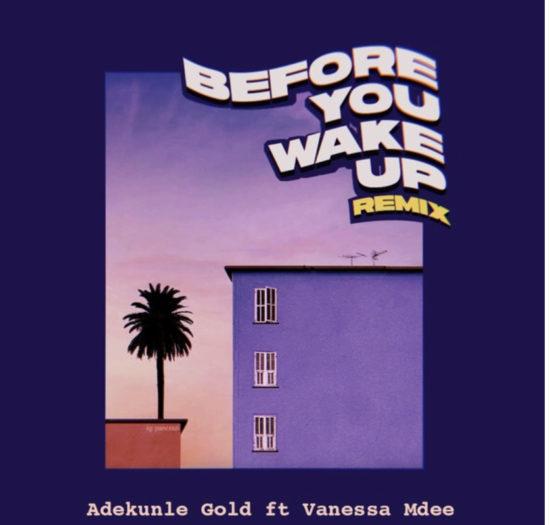 Adekunle Gold Before You Wake Up Remix