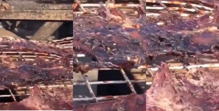 Nigerian Lady shocked after seeing how Kilishi is being made (video)