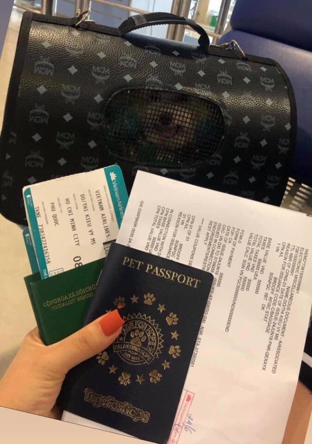 Lady flaunts pet's passport