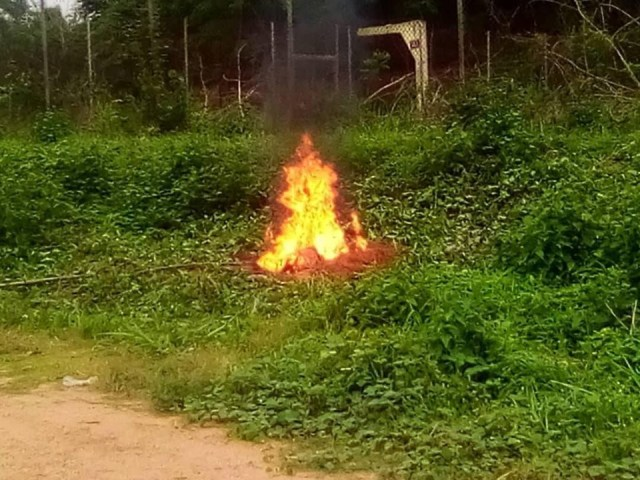 Exam malpractices: Management of Polytechnic  burns phones seized from students (Photos) 5