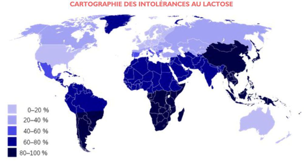 cartographie intolérance au lactose lait