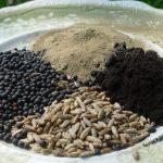 Health benefits of rye seeds