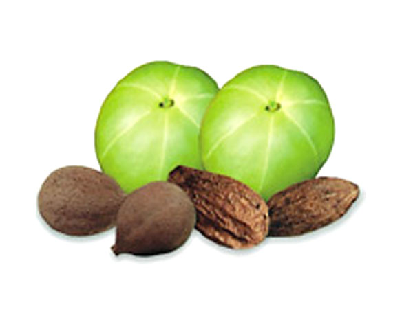 Prevent hair fall with triphala