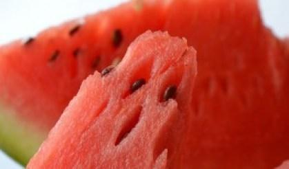 Best Summer Weight Loss Foods