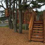 Commons Park and Playground