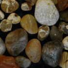 Beachcombing for Agates