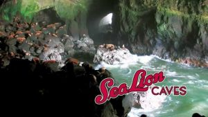 Sea Lion Caves, Yachats, Florence, OR