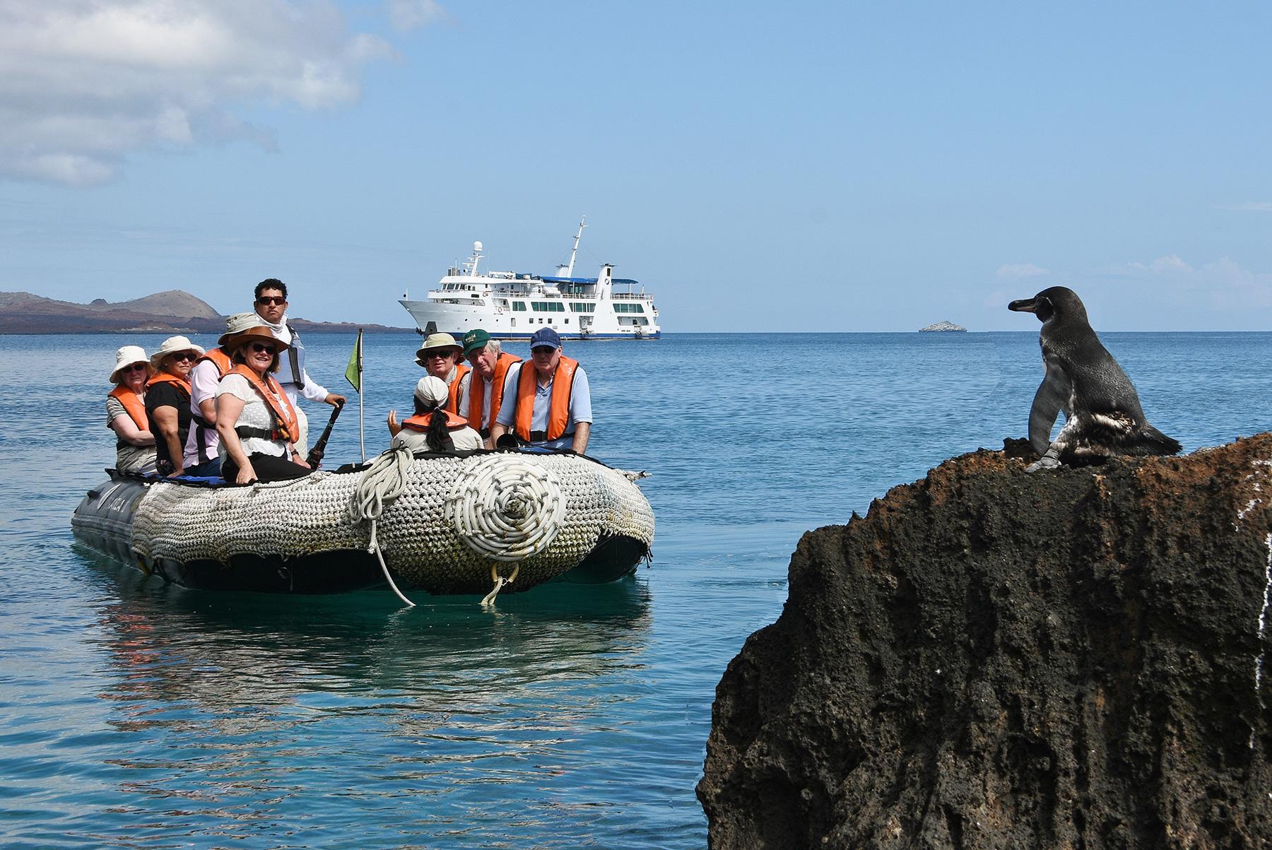 Galapagos Activities Amp Wildlife