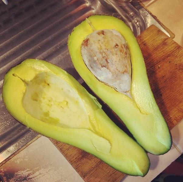 Avocado_Palta_Aguacate_4