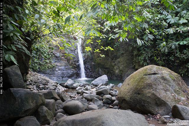 Amazon Jungle Waterfall, Bahia Ballena, Puntarenas, Costa Rica