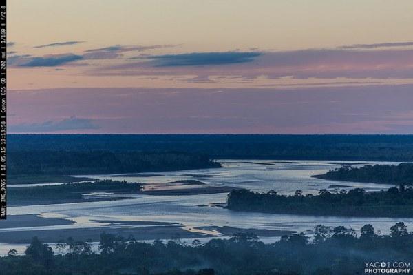 Amazon River Landscape