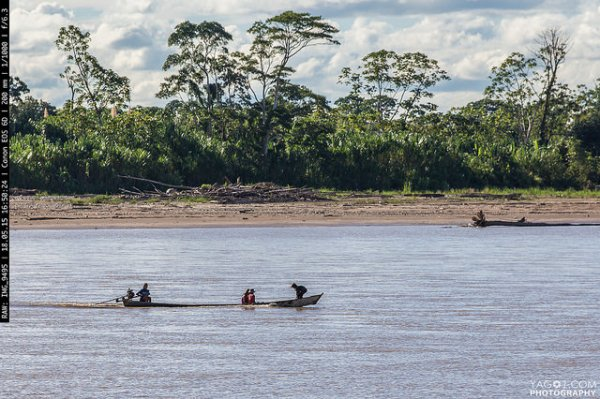 Amazon River Landscape Bolivia