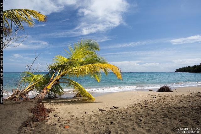 Costa Rica Talamanca Limon