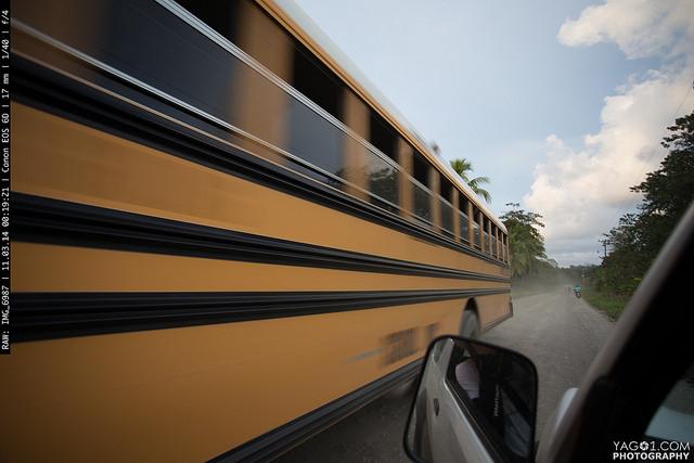 Costa Rica Yellow School Bus Pandora Limon