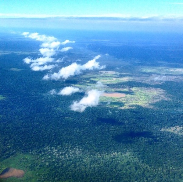Rainforest over Bolivia