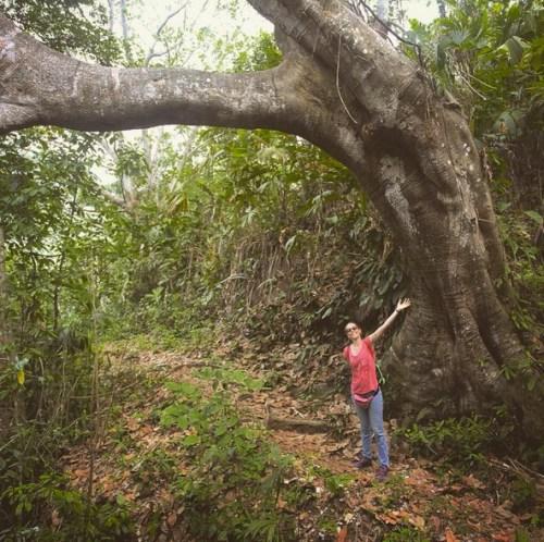 Santuario y Finca Ecológica Quebrada del Plátano treck