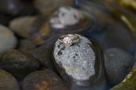Descanso-Gardens-engagement-pictures-ring
