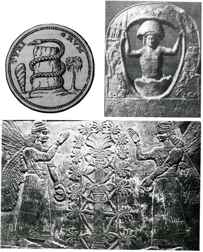 The 25 Days of Xmas Part 3: The Xmas tree | Biblepaedia