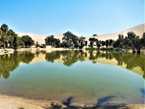 Pérou oasis huacachina désert