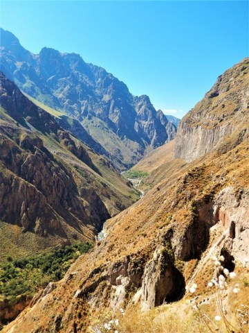 Pérou Cañon del Rio Colca