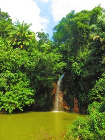 Brunei parc nature randonnée cascade