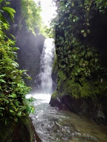 Equateur Mindo sanctuaire des cascades