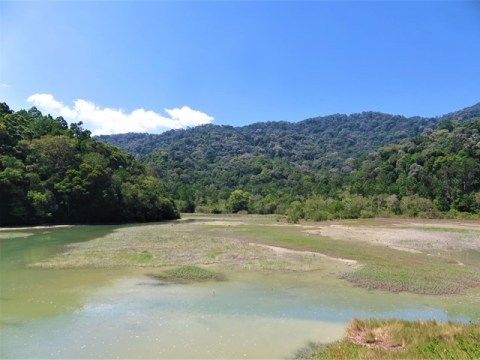 Malaisie Parc national Penang