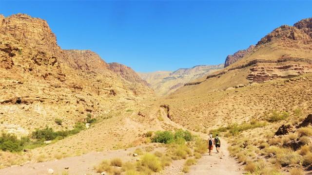 Jordanie vallée de dana randonnées